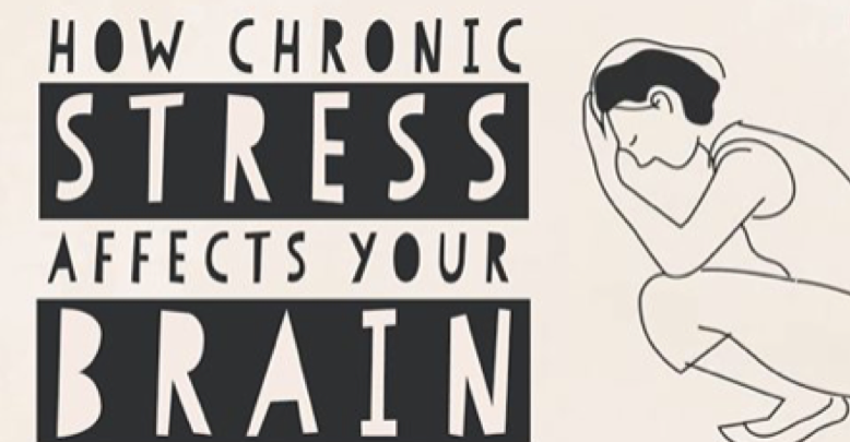 chronic stress affects your brain