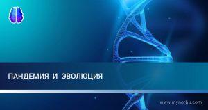 Пандемия и эволюция